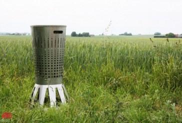 کشاورزی به کمک حشرات