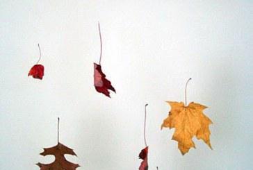 پاییز در خانهی شما