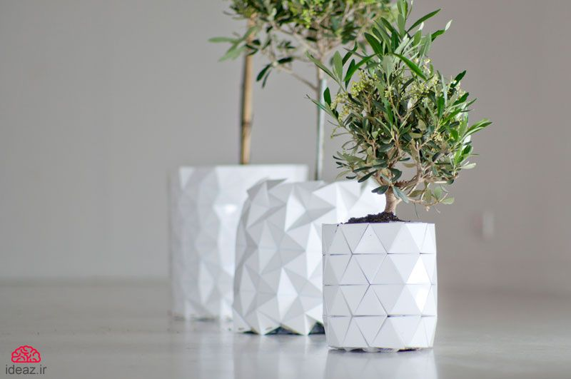 گلدان اریگامی؛ گلدانی که با گیاه بزرگ میشود!