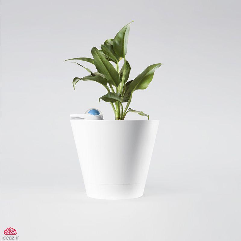 گلدان خودآبیار هوشمند