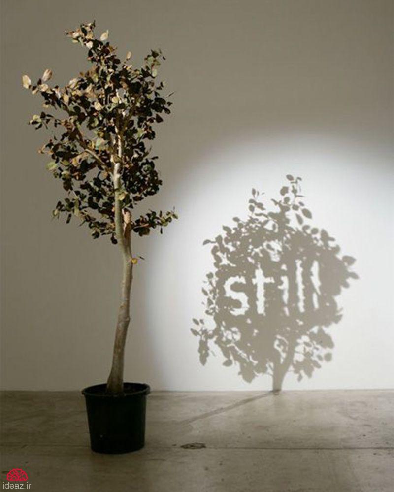 آیدیاز - هنر سایه ها