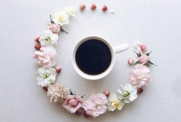 قهوهخوری در باغ گل
